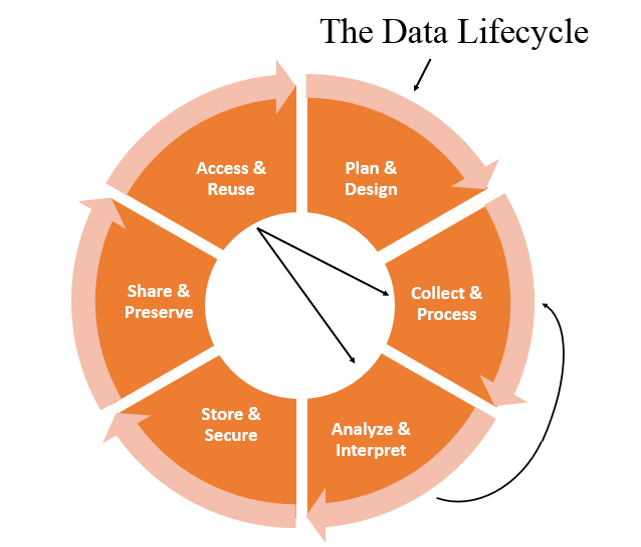 The Data Lifecycle - Vellucci, 2014