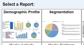 screenshot of demographic profile and segmentation options