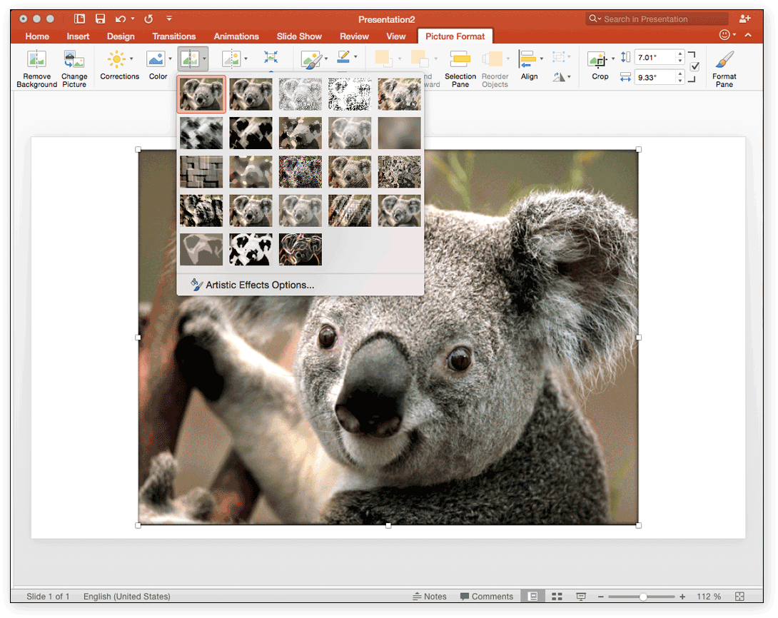 Design poster microsoft word - The Picture Format Tab Gives You Several Options For Pictures Including Quick Styles Borders And Artistic Effects Shown Below