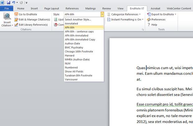apa citation endnotes