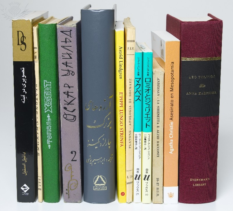 A row of books translated into a variety of languages.
