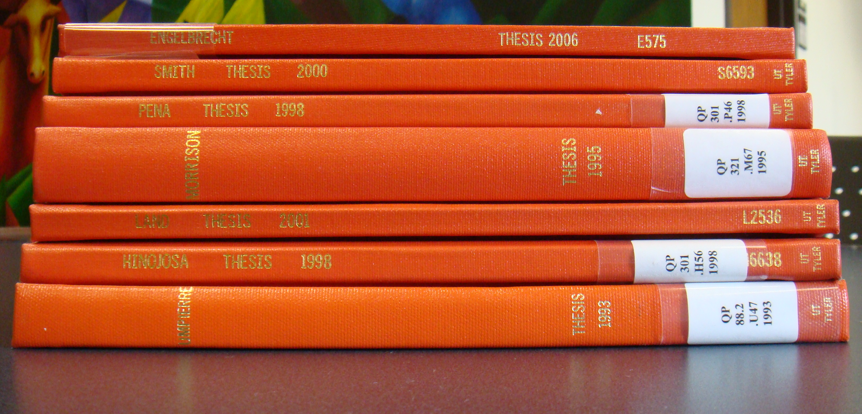 Theses and dissertations grey literature