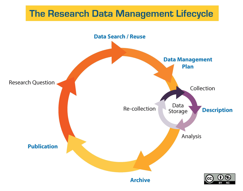 Data Management Basics - Data Management - Library Guides at ...