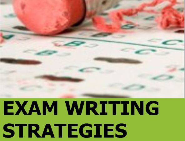 Image link to Exam Writing Strategies Guide