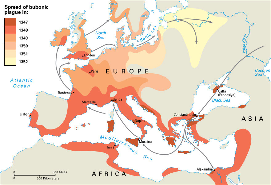 the origin and spread of the bubonic plague The bubonic plague better known as the black death was a deadly pandemic the origin of the plague links to central asia, according to ole j benedictow, a new study.