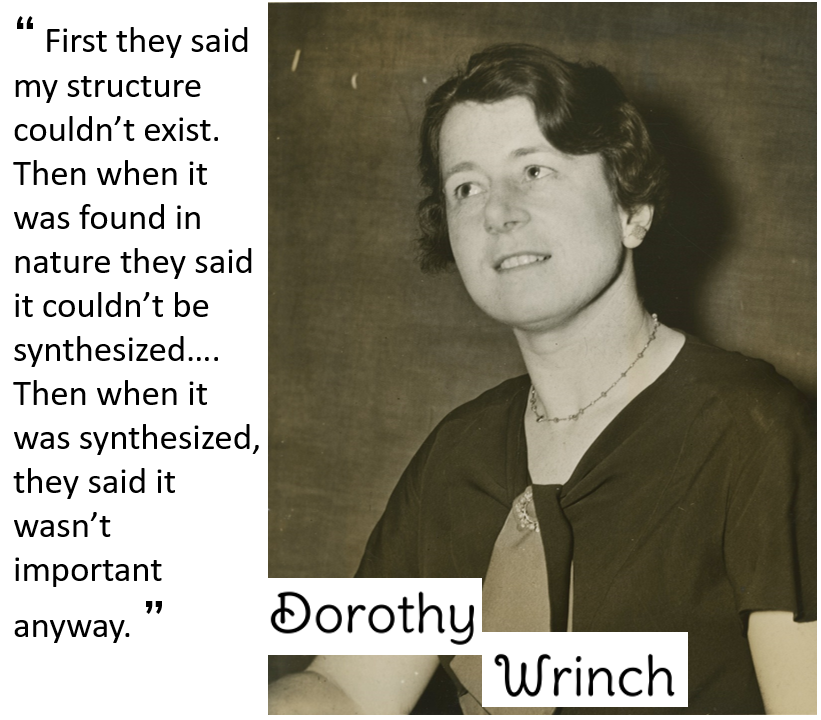 Dorothy Wrinch quote and picture