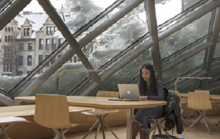 A student studies in Mansueto library in winter