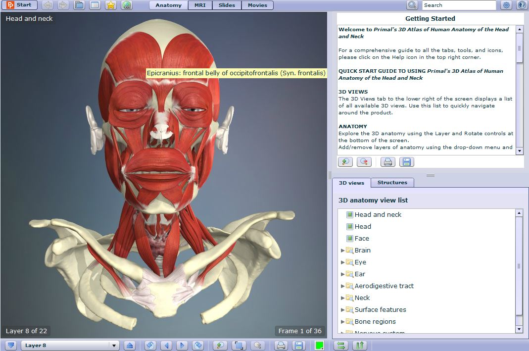 Anatomy TV - Anatomy and Physiology - LibGuides at La Trobe University