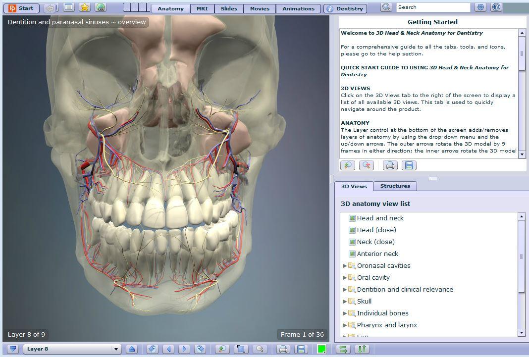 Anatomy Tv Anatomy And Physiology Libguides At La Trobe University