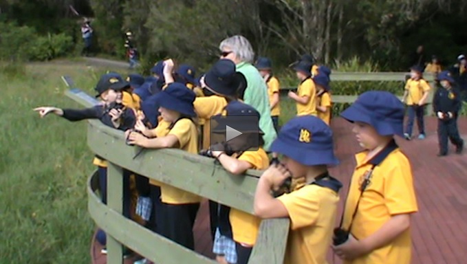primary school children behind the fence