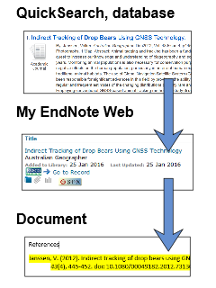 pictorial idea summary of database to endnote to document