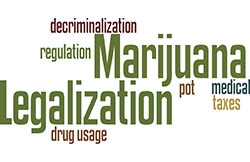 Essays Examples English  University Students Wishing To Conduct Research On Various Aspects Of  The National Debate Over Marijuana Legalization And Medical Marijuana Essay Papers Examples also Thesis Statements For Persuasive Essays Home  Marijuana Legalization And Medical Marijuana  Library At  Essays About English Language