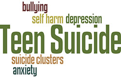 teen suicide a research report Prioritizing research to reduce youth suicide and suicidal behavior jeffrey a bridge, phd, lisa m horowitz, phd in this paper in youth suicide prevention research are discussed public health approach to youth suicide.