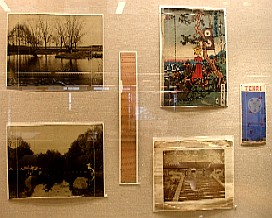 photo of exhibit case display