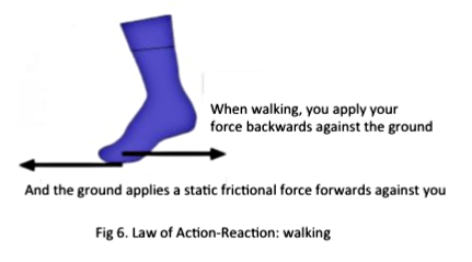 Law of action-reaction