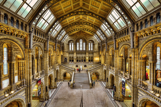 Photo showing interior of Natural History Museum, London