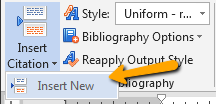 Image showing the Insert New link in Microsoft Word