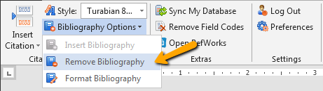 Screenshot of the Remove Bibliography option