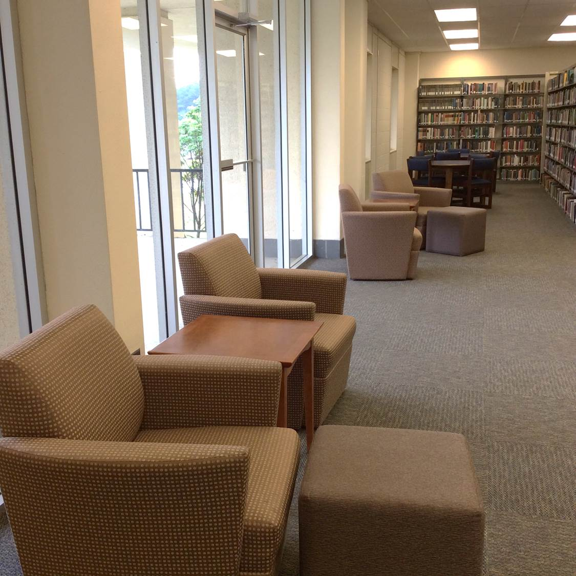Photo of Second Level study area
