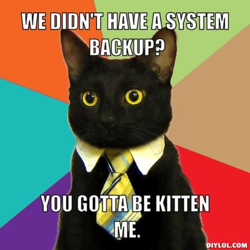 "Meme of a cat that reads, ""We didn't have a system back up? You gotta be kitten me."""