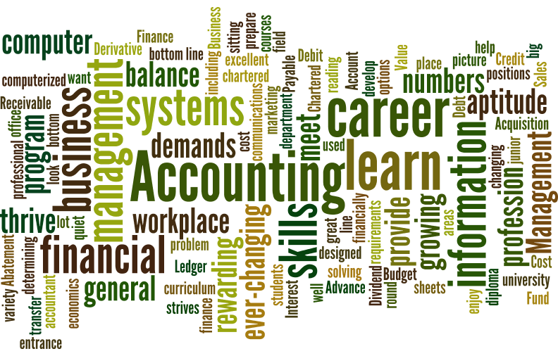 Accounting wordle