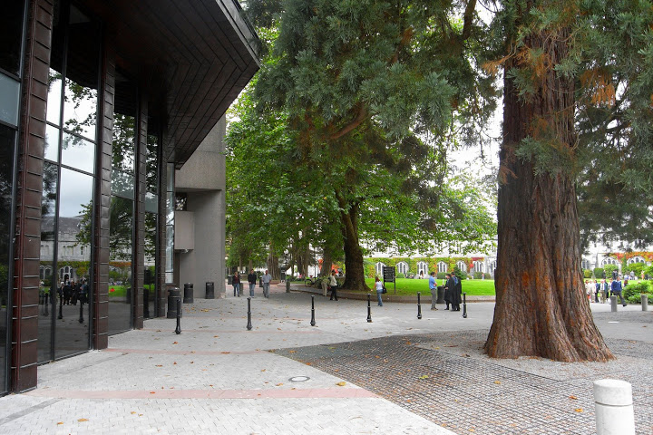 Boole Library exterior shot