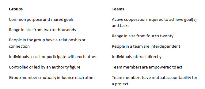 difference between group and team diversity Diversity and inclusion initiatives help teams reach their highest  diversity: the  presence of individual and group differences across all levels.