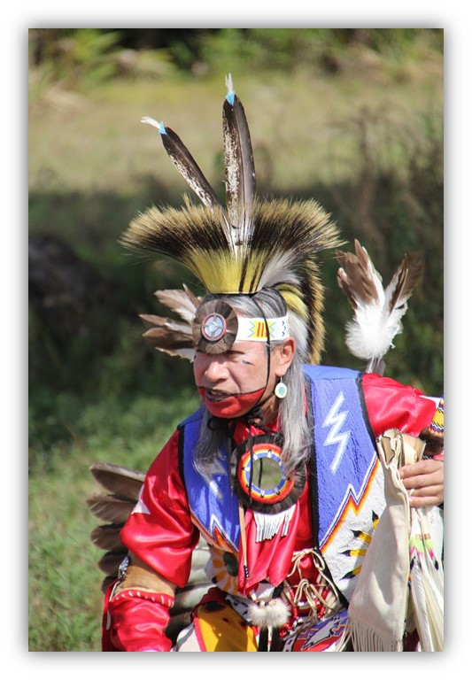 Image: Native American Dancer in Costume