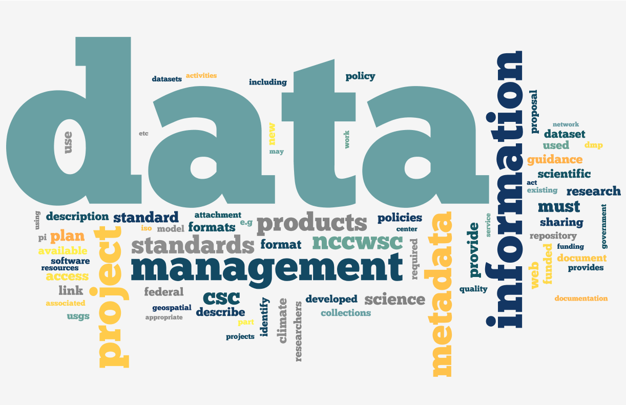 Data Management Word Cloud