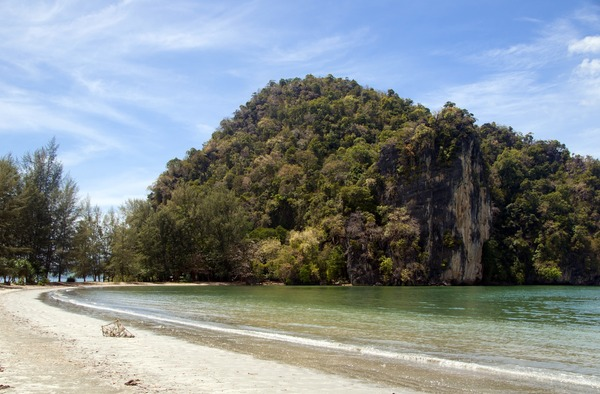 Thailand: Coastal forest and cliffs, Hat Chao Mai National Park, Trang Province / Pictures from History/David Henley / Bridgeman Images