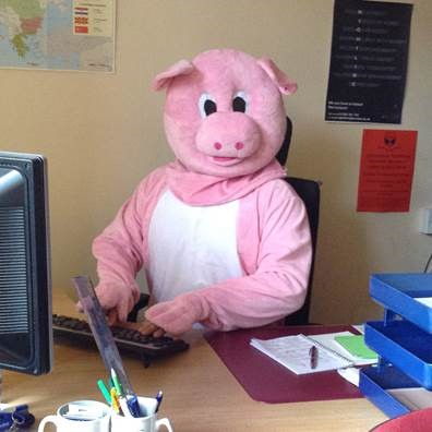 Photograph of Penny the Pig in office seated at desk. Penny is the mascot of University of Dundee Student Funding