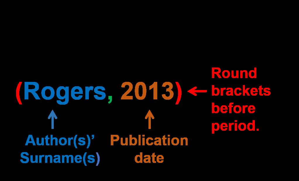 Camera business plan image 1