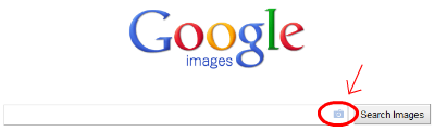 Image of the Google Image search interface