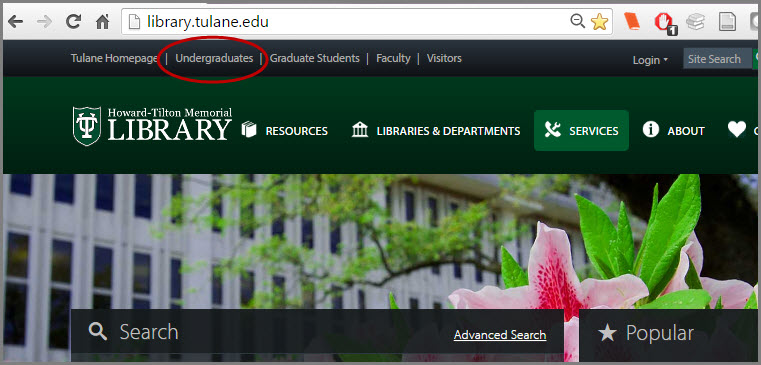 Undergraduates services page on the library website