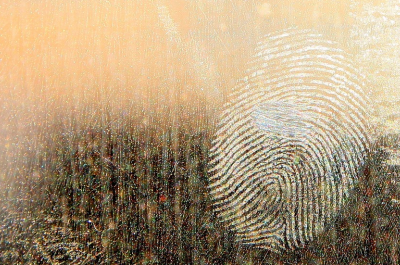 Photo of a fingerprint