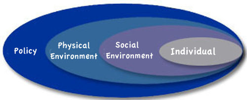 Unit 3 physical education pe rsc virtual library at rowville the social ecological model is a dynamic way of representing the factors that influence an individuals physical activity levels the model is comprised of fandeluxe Choice Image