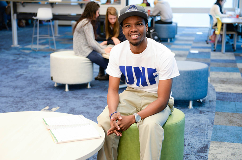 Student studying in the library learning commons.