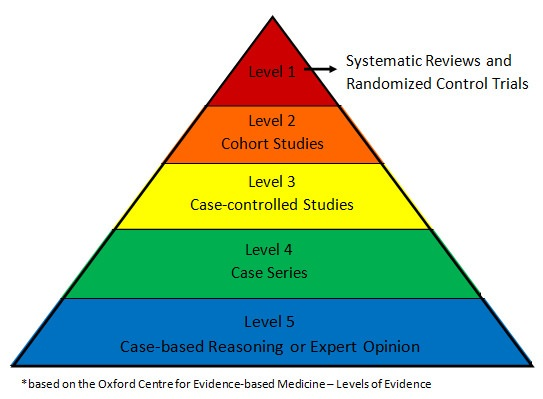 how to describe high level evidence search