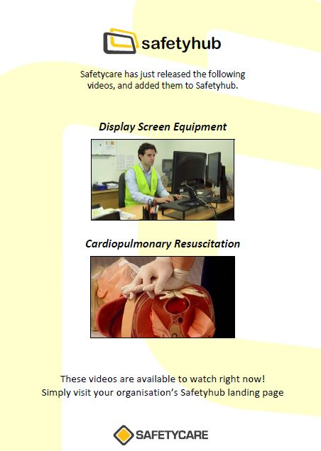 Safety Hub New Videos