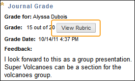 view rubric icon