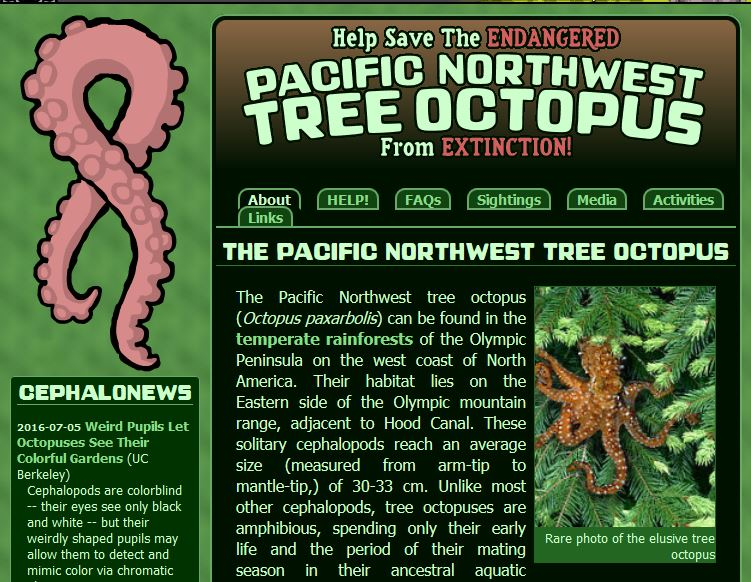 screenshot of the pacific northwest octoput website home page