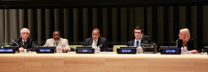 Delegates and UN officials during a meeting