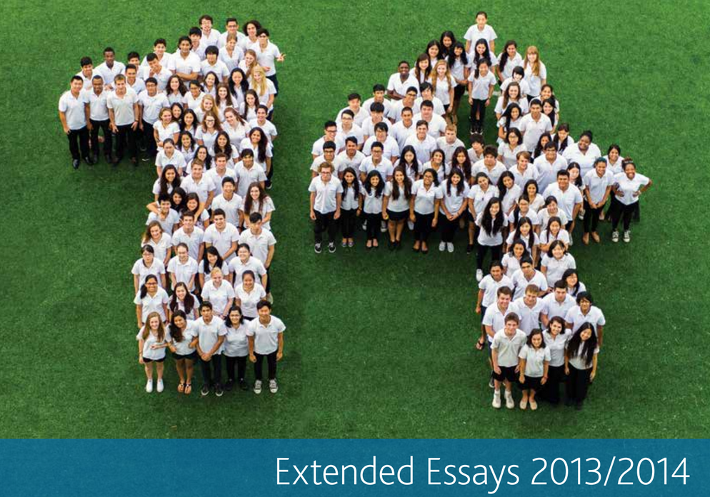 Ib world studies extended essay examples