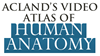 Icon - Acland's Video Atlas of Human Anatomy