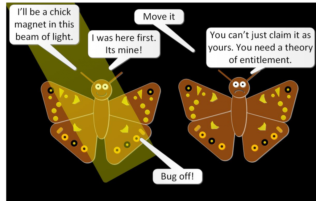 speckled wood butterfly comic