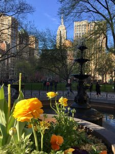Looking over fountain in Madison Square Park, Empire State Building in background