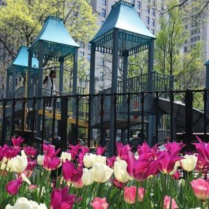 Playground in Madison Square Park
