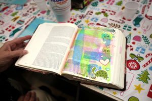 LifeWay Bible journaling Bible