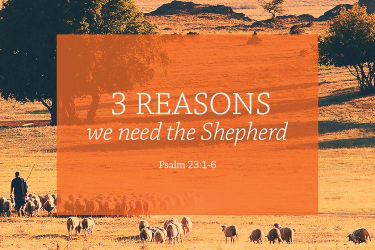 3 Reasons we Need a Shepherd (Session 3 – June 18, 2017) Psalm 23:1-6 – The Shepherd