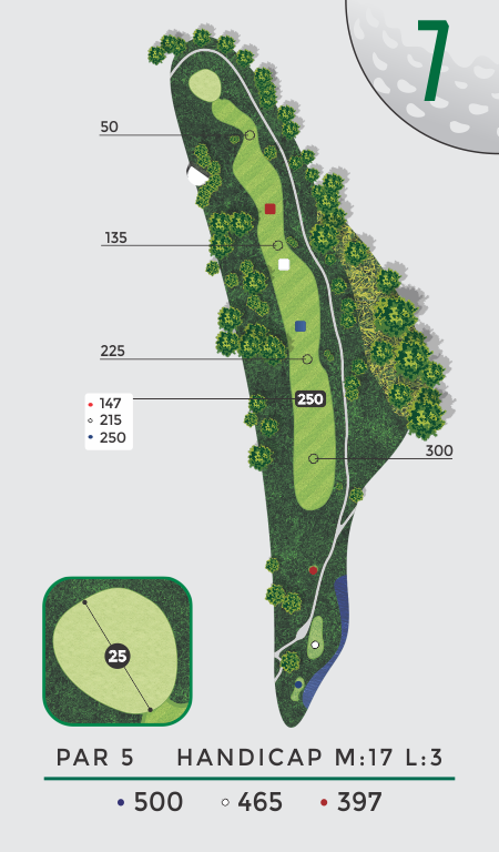 LA Nickell Hole 7 Overhead View